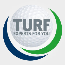 More about turf